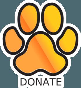 Panthera Africa Donate