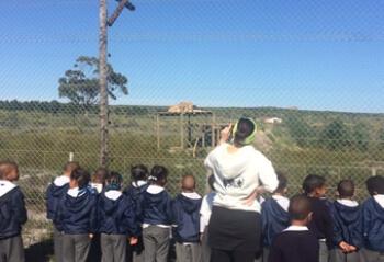 panthera-africa-school-visits