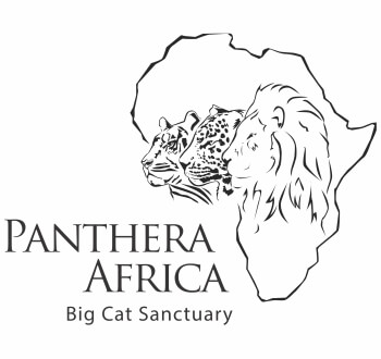 panthera-africa-about-us