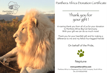 panthera-africa-gifts-donation